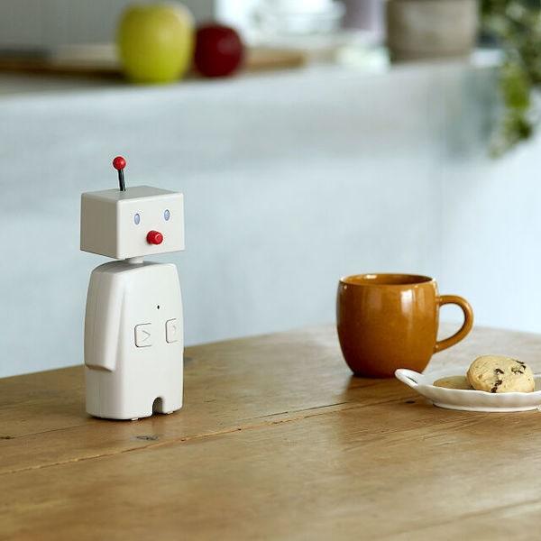 bocco family robot